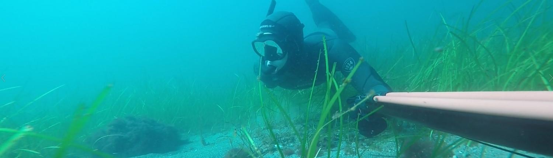 UV-jagt under vand